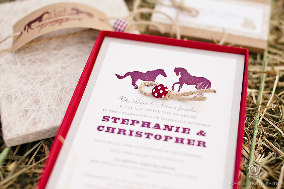 paleterra invites and designs Equestrian Style Shoot