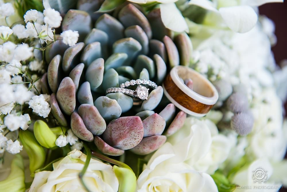 grogeous ring photo in succulents MacLaren Art Centre Wedding