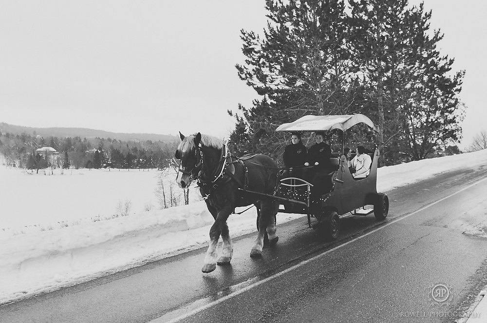 horse and carriage muskoka winter wedding Deerhurst Resort Elopement   Muskoka
